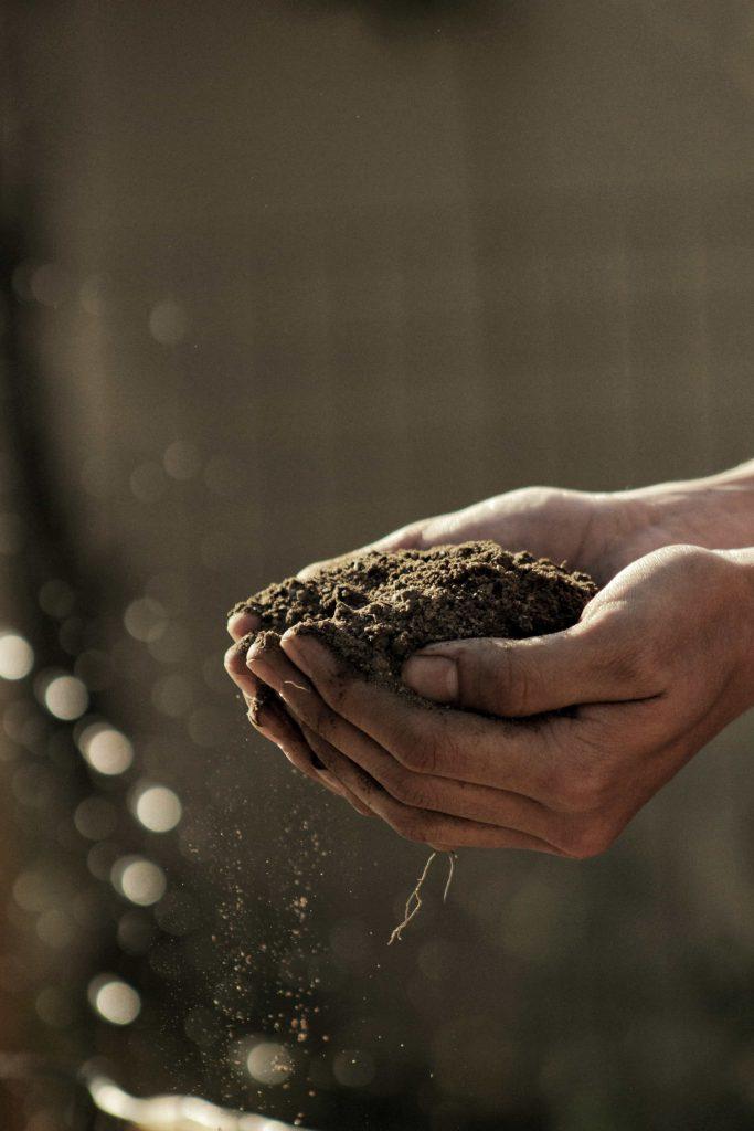 mani che raccolgono la terra rappresenta la qualità del terroir